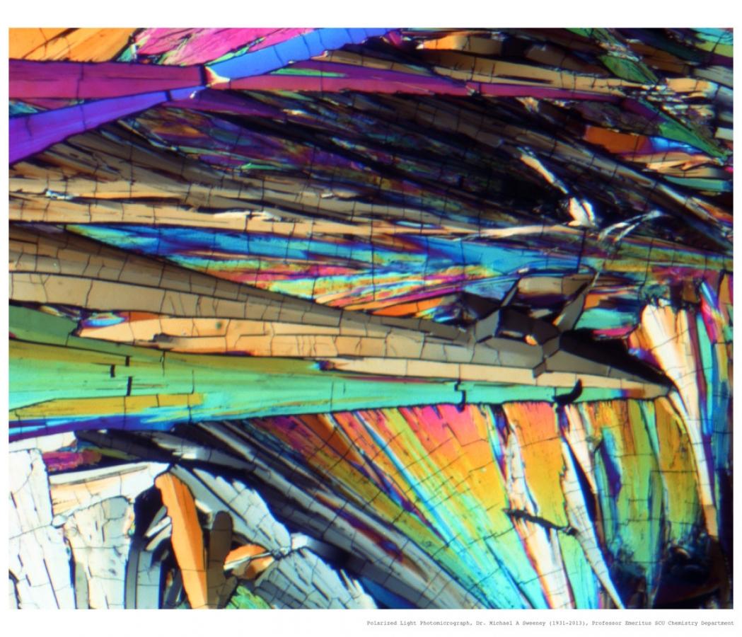 http://www.mudstonephoto.com/files/gimgs/th-26_mike_sweeney_photomicrographs-3_v2.jpg