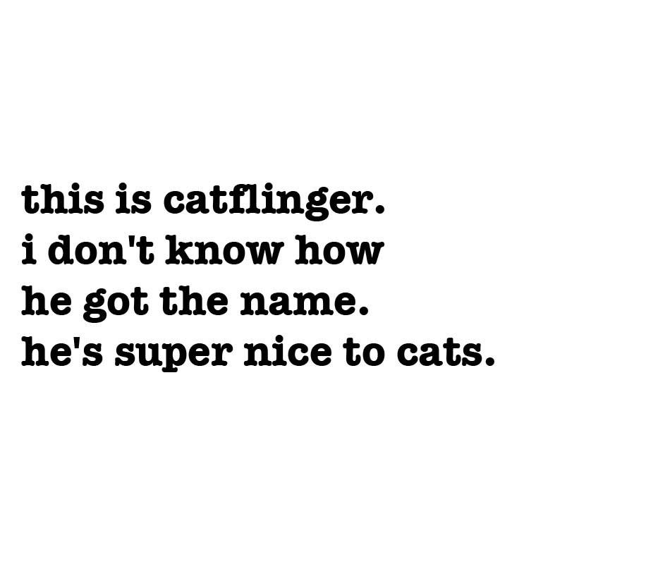 http://www.mudstonephoto.com/files/gimgs/th-22_catflinger-txt.jpg